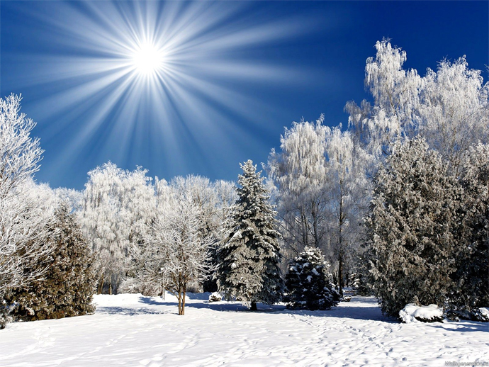 Как фотографировать в солнечную погоду