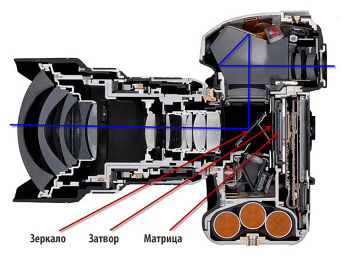 Виды объективов для зеркальных фотоаппаратов